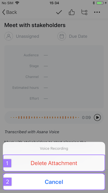 Screenshot with focus on option to remove audio from task